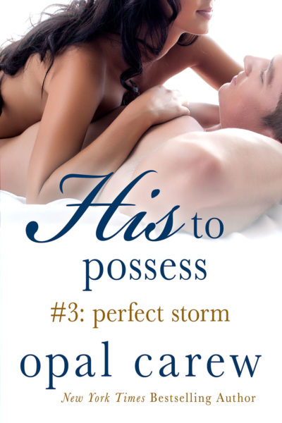His To Possess: Perfect Storm Cover Art
