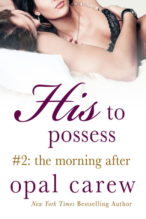 His To Possess: The Morning After Cover Art