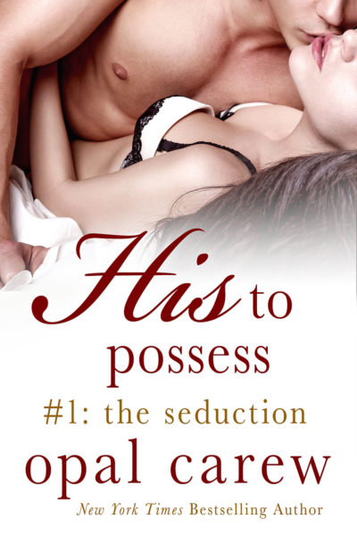 His To Possess: The Seduction Cover Art