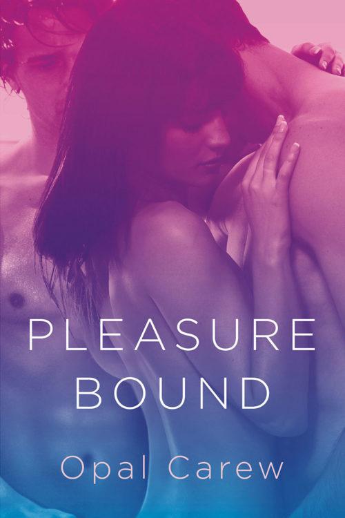 Pleasure Bound Cover Art