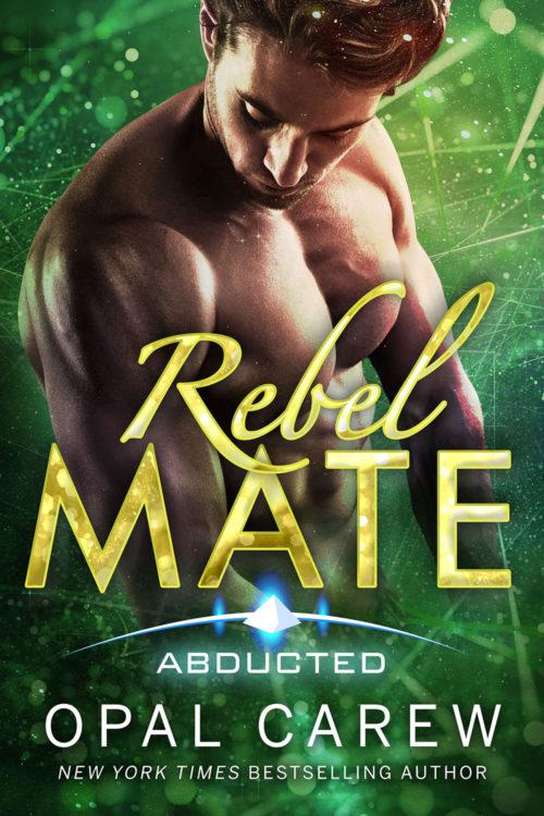 Rebel Mate Cover Art