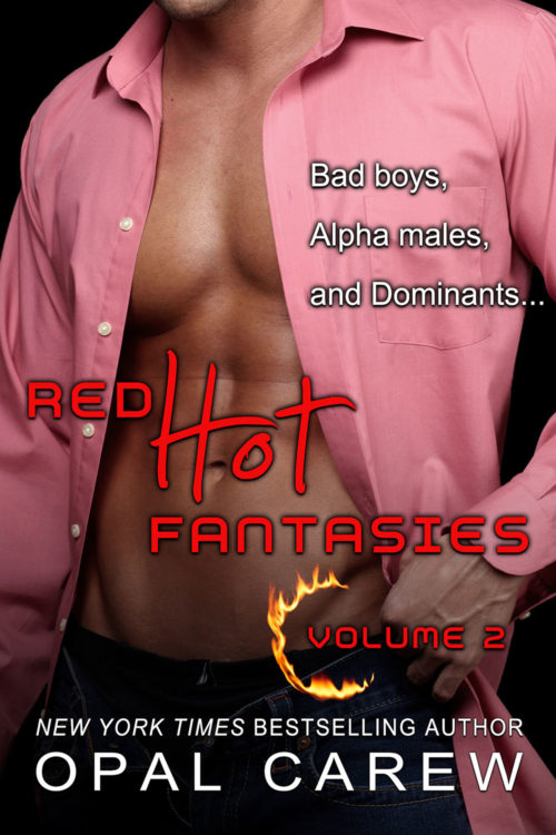 Red Hot Fantasies Volume 2 Cover Art