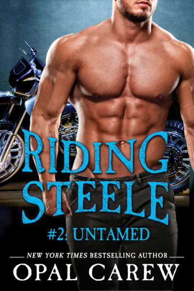 Riding Steele: Untamed Cover Art