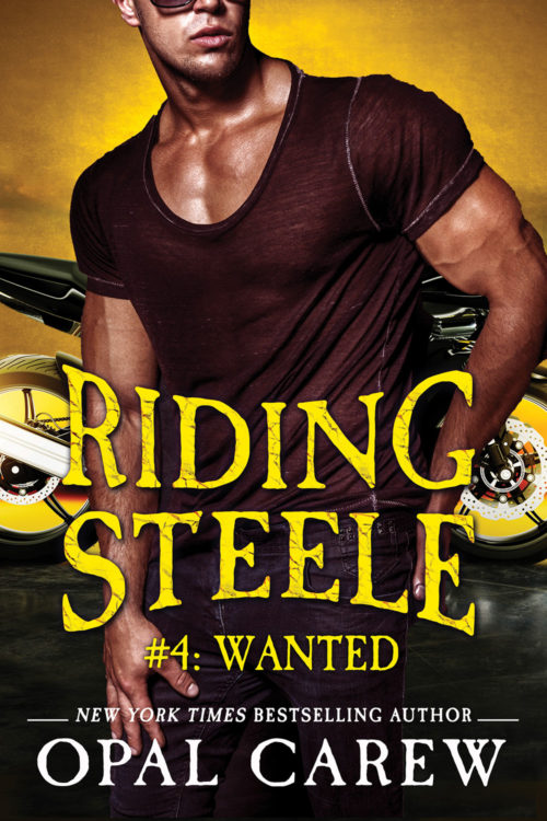 Riding Steele: Wanted Cover Art