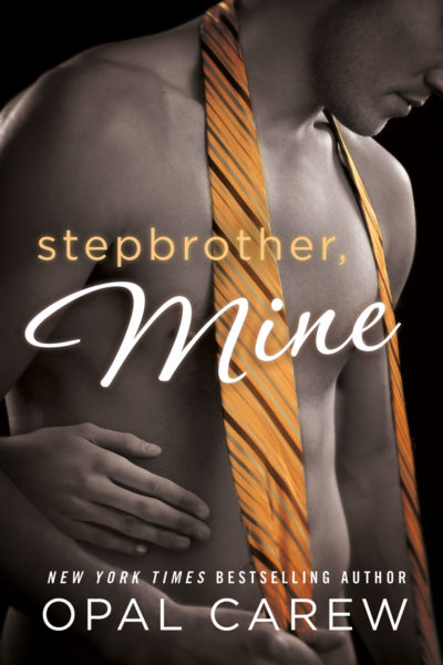 Stepbrother Mine Cover Art