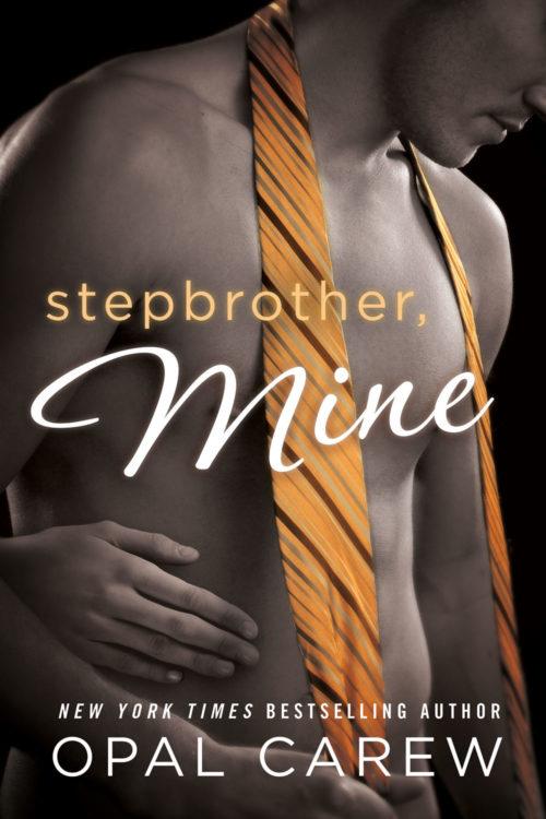 Stepbrother Mine Cover Art