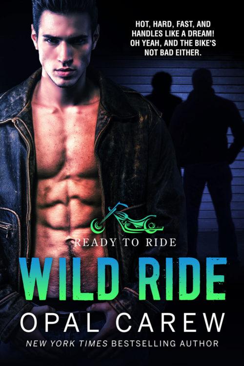 Wild Ride Cover Art