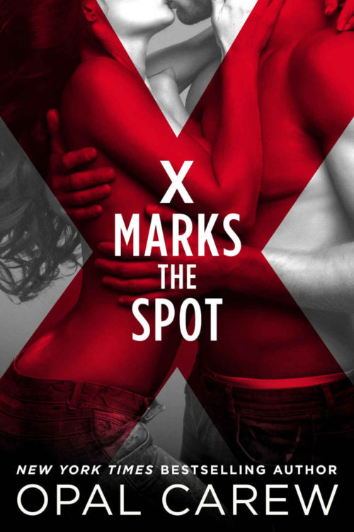 X Marks the Spot Cover Art