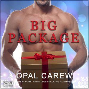 Big Package Audio